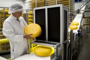 Cono Kaasmakers.Het nieuwe Visionsysteem dat door middel van een code in de kaas de kaassoort scant waarna het wordt geexporteerd. Op de foto Wim Scholtens © Fotografie Menno Sabel.